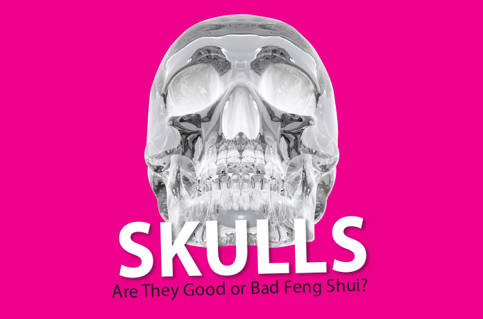3a243117 Skulls: Are They Good or Bad Feng Shui? - WOFS.com