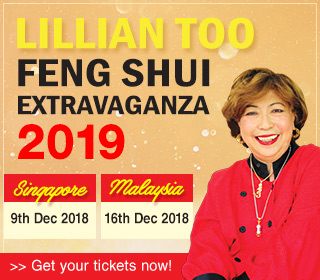 feng shui 2019 events