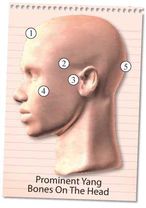 Vein In Forehead When Smiling Meaning